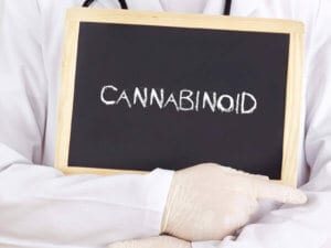 Doctors Are Paying Increased Attention To Cannabinoids As They Are Increasingly Legalized