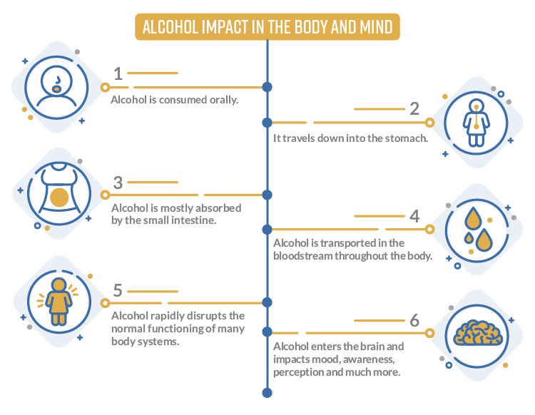 How Alcohol Impacts The Body Chart
