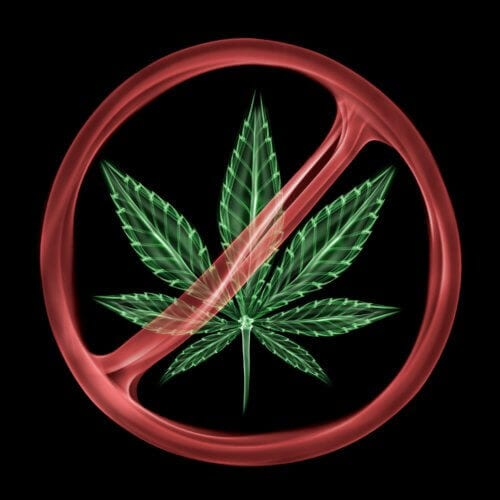 Marijuana Detox Greatly Improves The Likelihood That A Patient Will Successfully Overcome Addiction